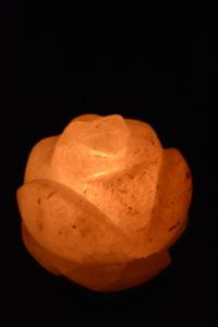 Salzlampe - Lotus 2
