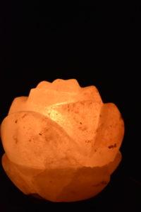 Salzlampe Lotus